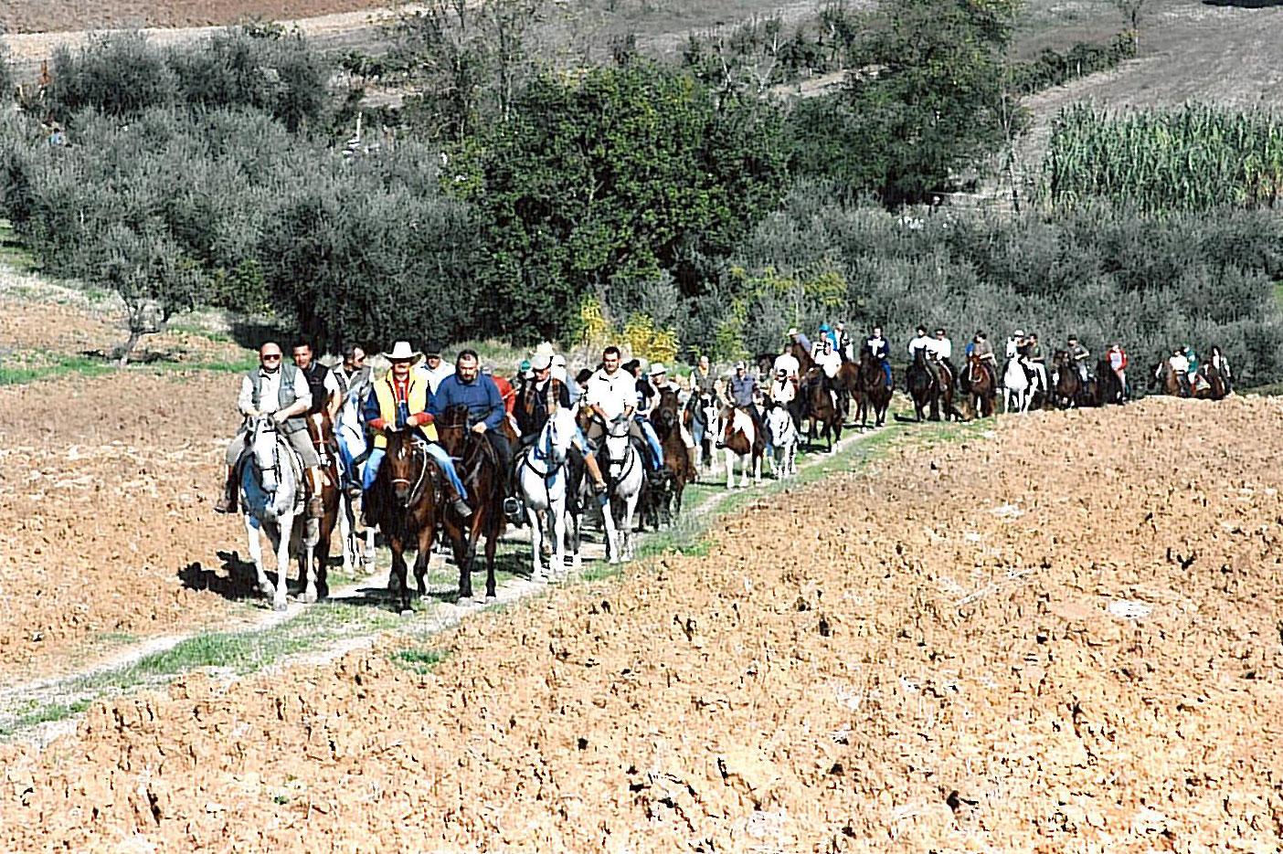 """""""Il Giro delle Cantine"""" a cavallo!"""