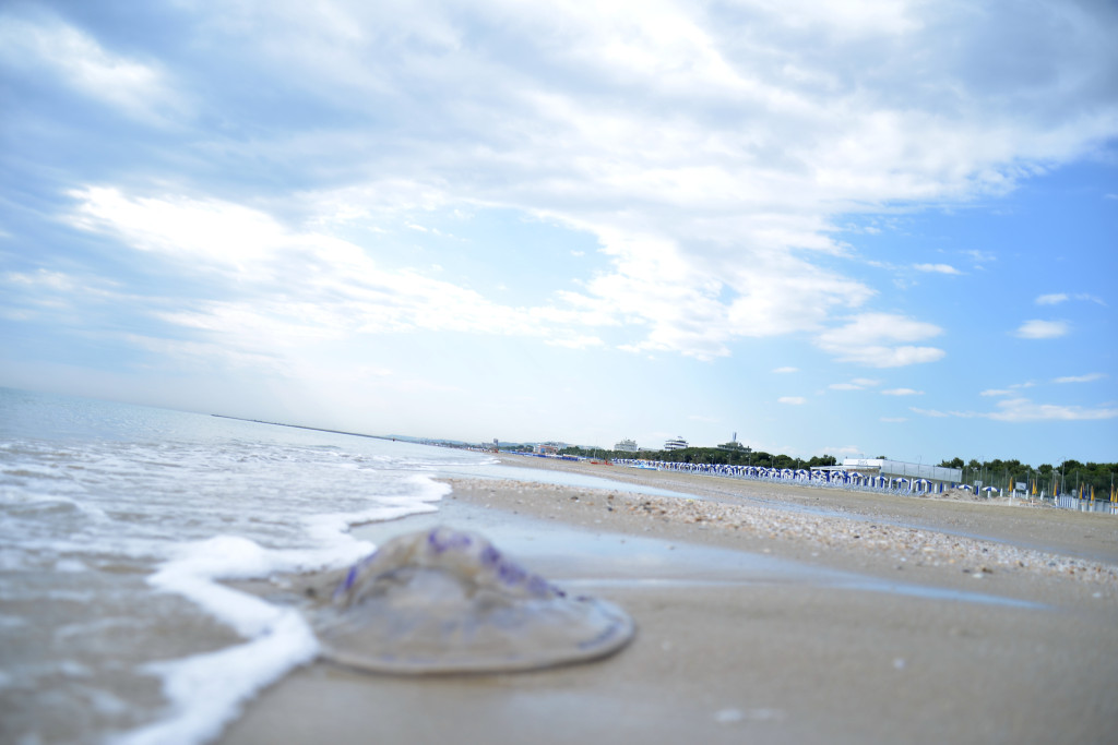 spiaggiaGiulianova5mag2014_0016