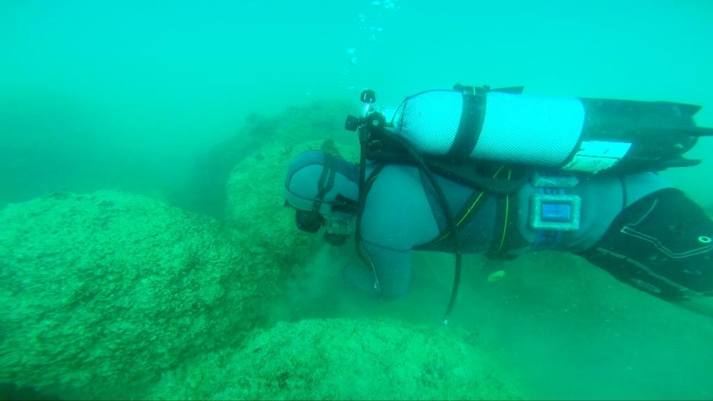 Sub in azione su Oasi Marina Giulianova Cologna