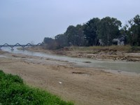 fiume-salinello