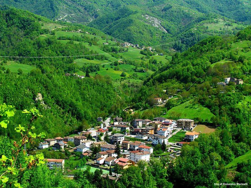 Valle Castellana, gli animali selvatici stanno distruggendo le colture