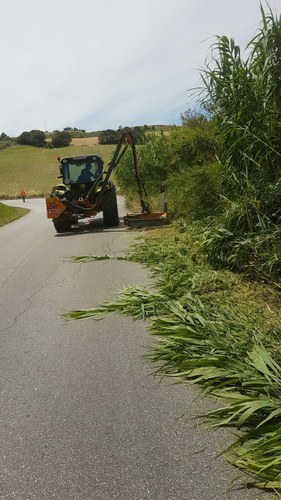 Sfalcio dell'erba sulle provinciali: 200 mila euro per le ditte esterne