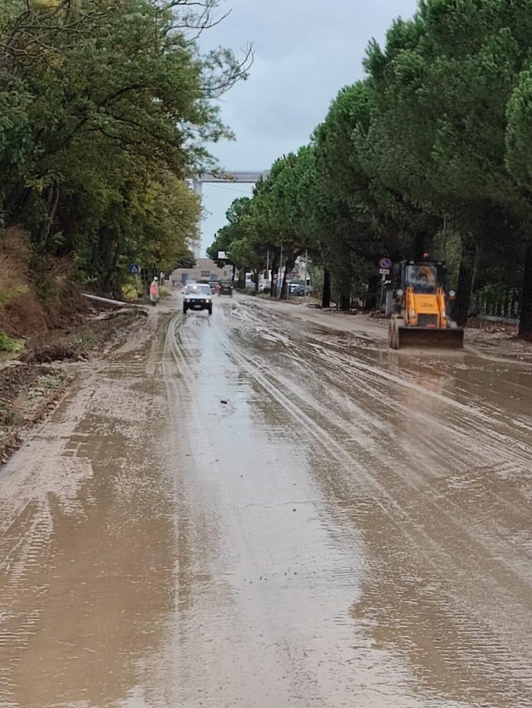 """Detriti e fango sulle strade, per la Provincia è """"Colpa dei campi non curati"""""""